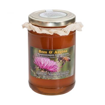 Ελληνικό Μέλι Θυμάρι Ποικιλία Αίγινας 500gr